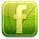 eco green facebook icon